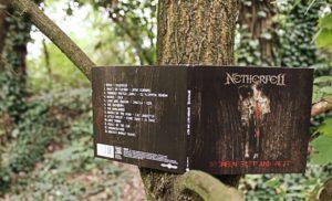 Netherfell 6